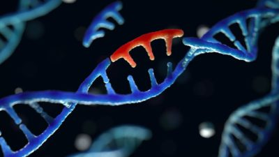 UK offers genomic sequencing capacity and capability to Pakistan